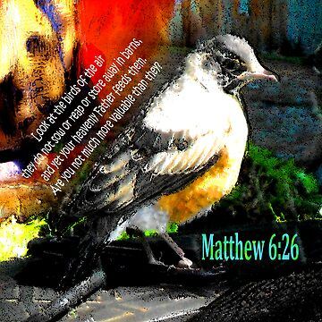 Matthew 6:26 Robin by RuthPalmer