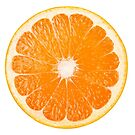 Slice of orange by 6hands