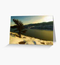 The lonley Winter Evergreen Tree Greeting Card