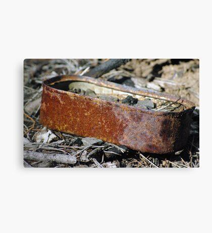 rusty sardines Canvas Print
