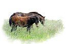 Horses of Norfolk by Foxfire