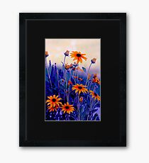 Beautiful yellow flowers Framed Print