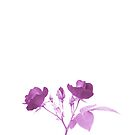 Beautiful Purple Roses on White Background. Love Yourself.  by Shelly Still