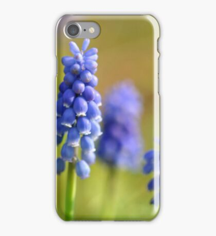 Purple Parade iPhone Case/Skin