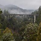 Cedar Creek Bridge, South Leggett, California by Mike Kunes
