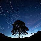 Solstice Trails by Roddy Atkinson