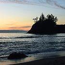 Pewetole Island, Trinidad, California by Mike Kunes