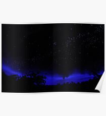 Stars Over the Rainforest (Cafe) Poster
