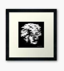Einstein Waves Framed Print