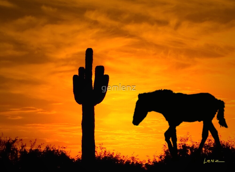 Lone Cactus and Horse by George Lenz