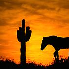 Lone Cactus and Horse by gemlenz