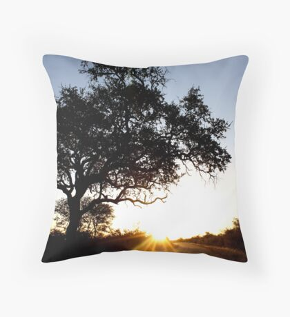 This is sunset boulevard... Throw Pillow