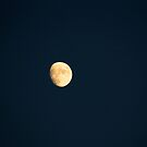I see the moon and the moon sees me by Dan Shiels