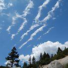 Tahoe by JMerriman