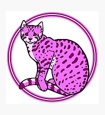 Transwoman Wildcat Photographic Print