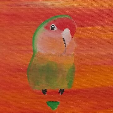 Sebastian the Peach Faced Lovebird by parakeetart