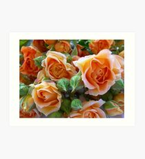 Roses and Buds Art Print