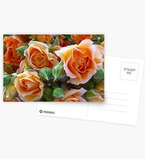 Roses and Buds Postcards
