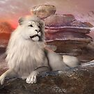 Lion in the sunset by Andrea Tiettje