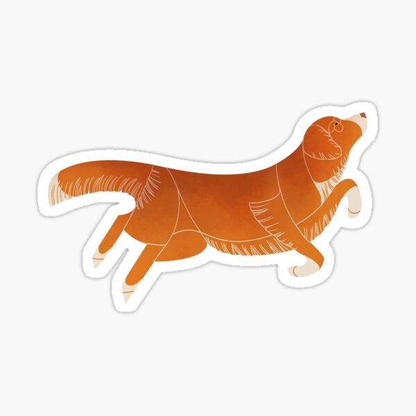 Geometric Dogs - Retriever de Nouvelle Ecosse Sticker
