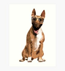 Bull Terrier  - Bully Art Print