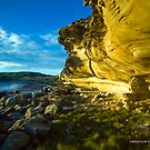 At the Setting of the Sun - La Perouse, NSW by Malcolm Katon