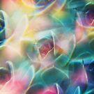 Succulent photographed through prism filter by Karin Elizabeth