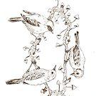 Vogel-Trio von MushroomOTD