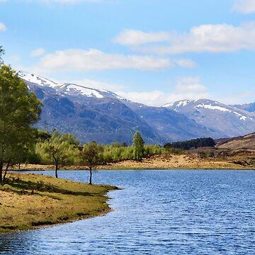 Spring in Glen Cannich by maureenbrace