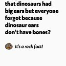 It's a rock fact! #2 by Expandable Studios