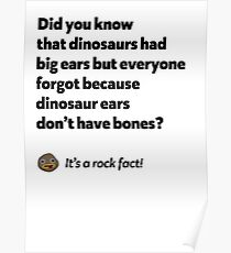 It's a rock fact! #2 Poster