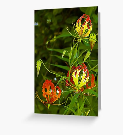 Red,Yellow and Green Greeting Card