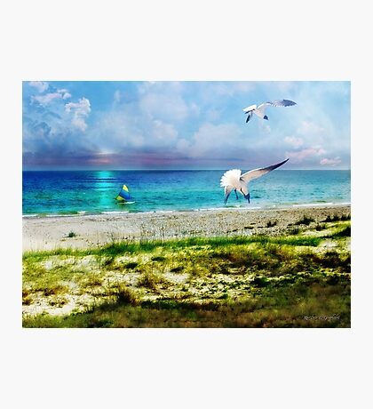 On Canvas Wings I Fly Photographic Print