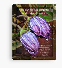 Trauerkarte mit Cape Daisies Leinwanddruck