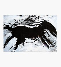 Black Horse 6 Photographic Print