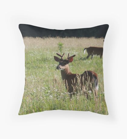 Buck in the Cove Throw Pillow