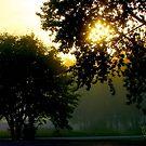 Early morning. © Dr.Andrzej Goszcz by © Andrzej Goszcz,M.D. Ph.D