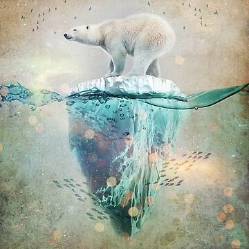 Polar Bear Adrift  by vinpez