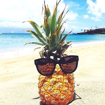 Funny Pineapple Sunglasses by burninice