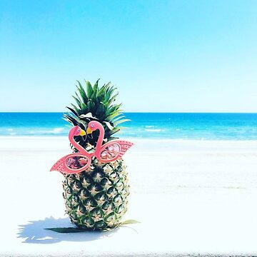 Pineapple with Flamingo Sunglasses by burninice