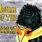 House of the Merricat by Rachel Smith