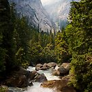 Merced River In Yosemite National Park by Christopher Toumanian