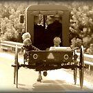 Amish Dreams by Gayle Dolinger