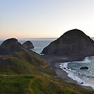 Sisters Rock, Curry County, Oregon by Mike Kunes