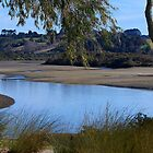 The Orewa River at low tide......!! by Roy  Massicks