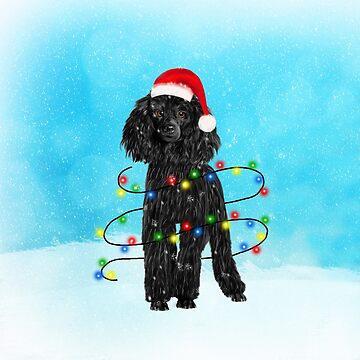 Black Poodle dog with Christmas Lights in Snow by aashiarsh