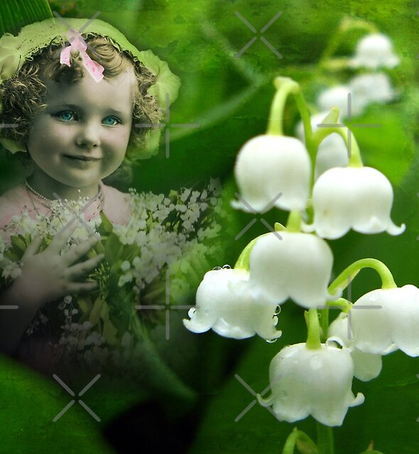 Lily of the Valley by Beverlytazangel