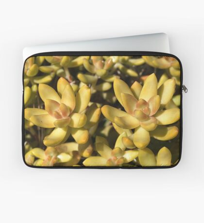 Greens Of A Succulent Laptop Sleeve