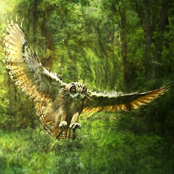 Owl Forest by Cliff