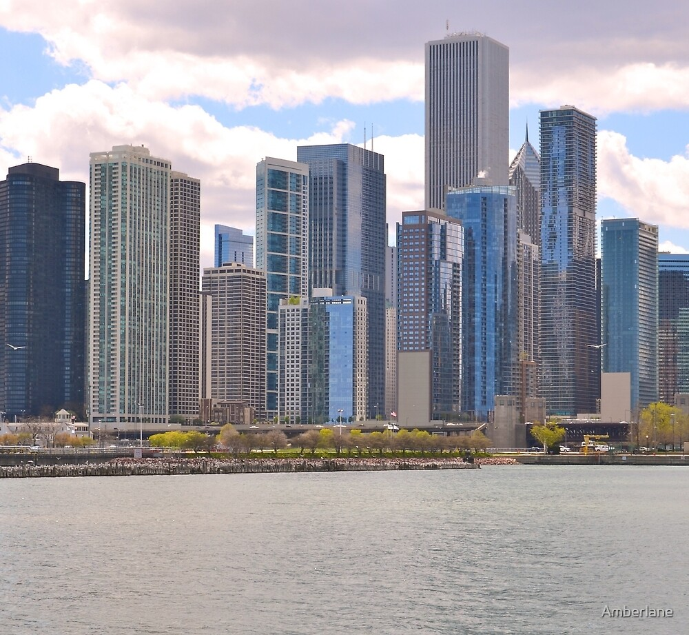 Chicago Skyline by Amberlane